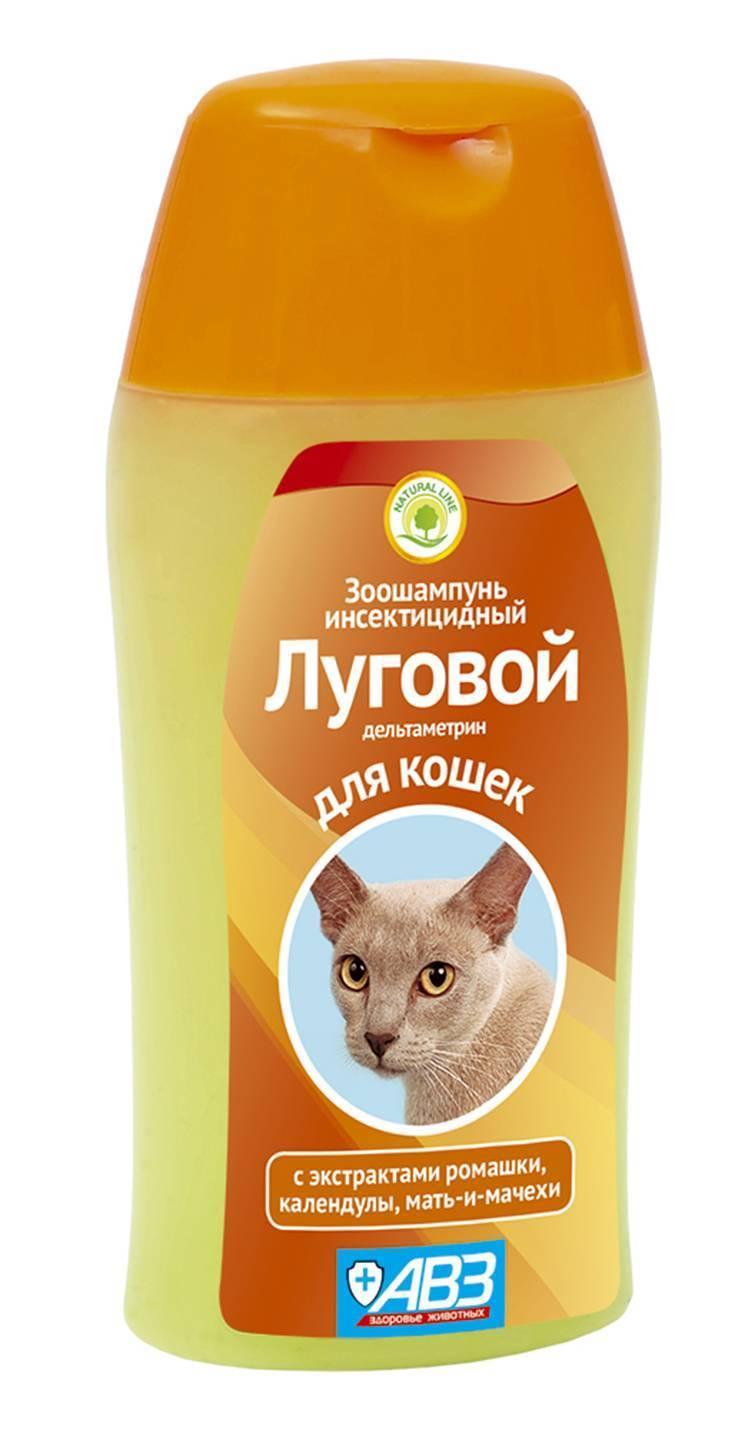 Выбираем лучший шампунь против блох для кошек