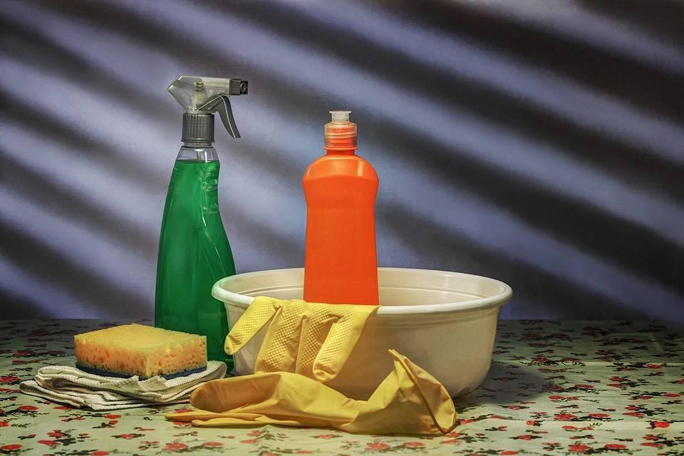 Как избавиться от рыжих муравьев в квартире и частном доме