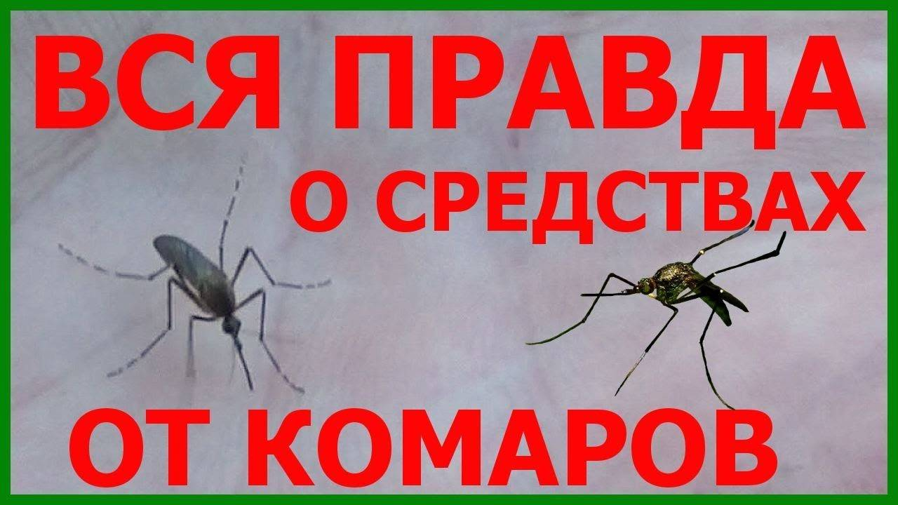 Народные средства от укусов комаров и мошек