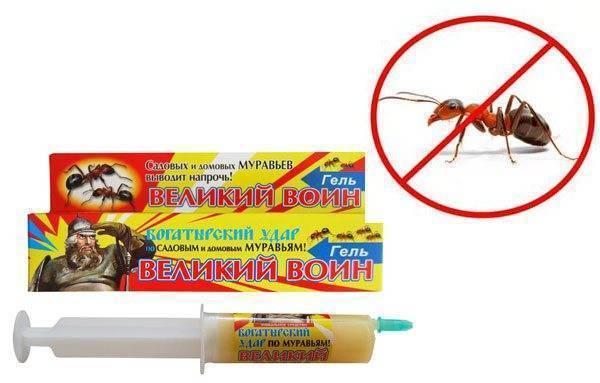 Гель «великий воин» — спасение от нашествия тараканов в квартире!