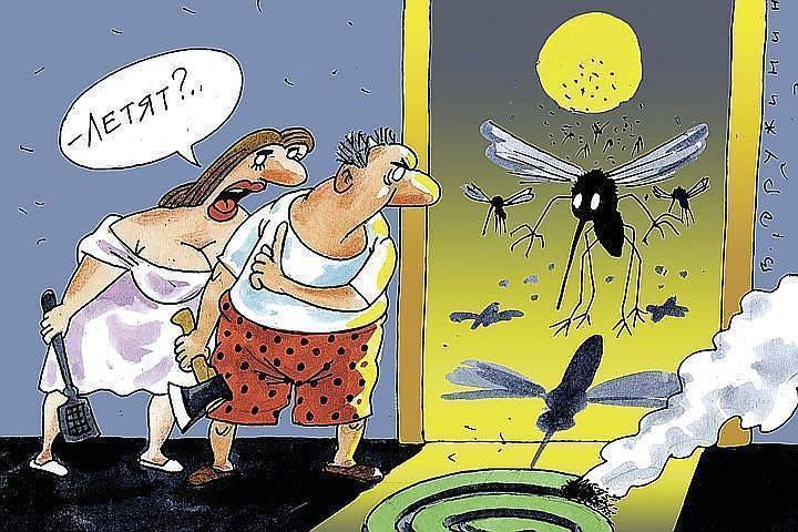 Есть ли комары в крыму