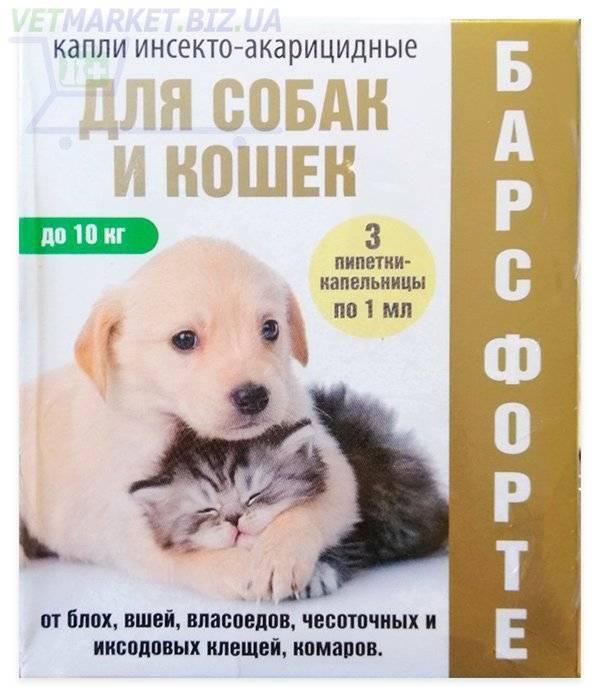 10 лучших средств «барс» (капли, спрей, шампунь) от блох и клещей, для собак, кошек, щенков, котят – инструкция по применению, отзывы