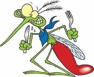 Вредны ли пластины от комаров. вредно ли использование фумигатора для здоровья человека