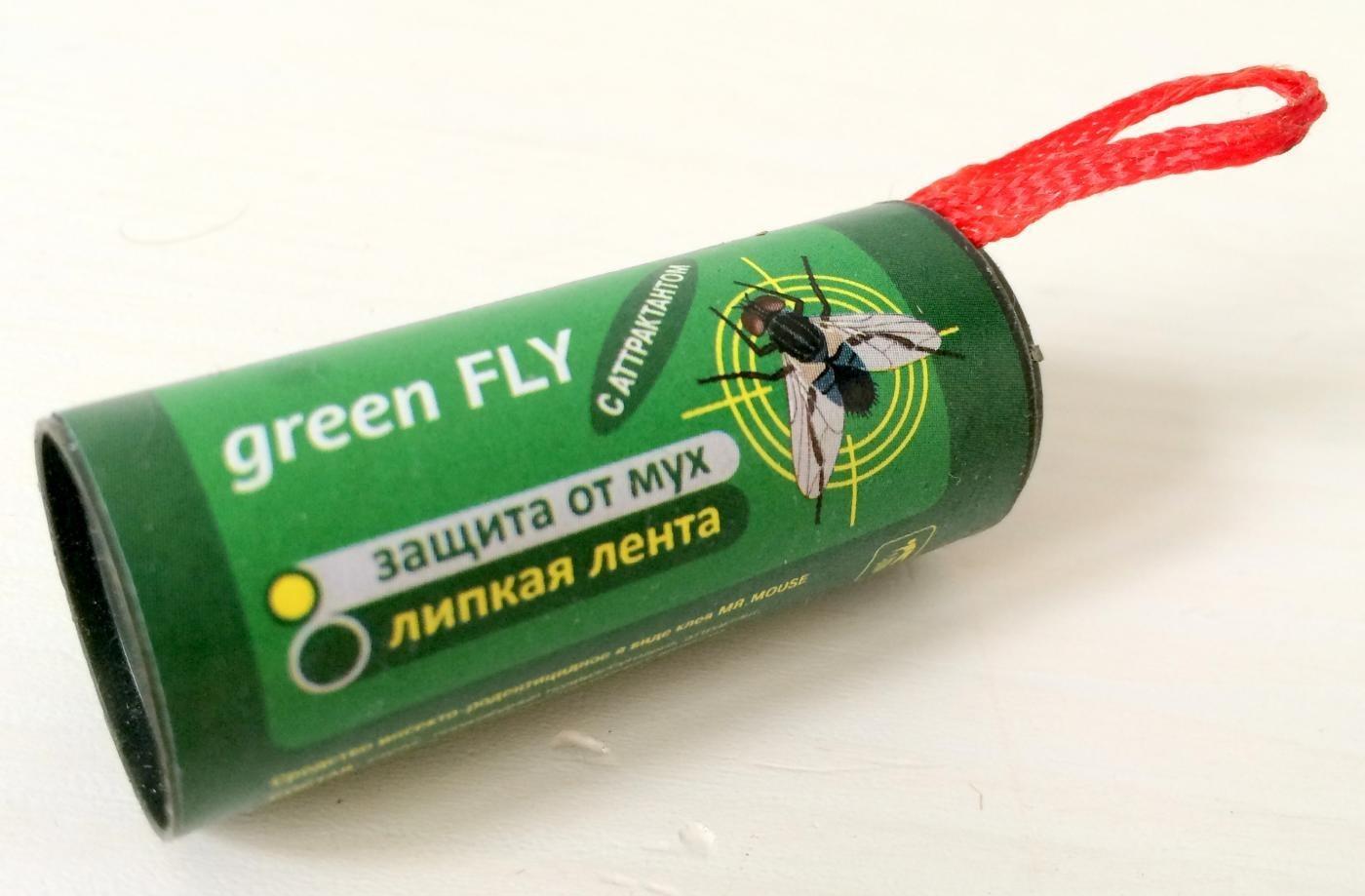Морковная муха и как с ней бороться