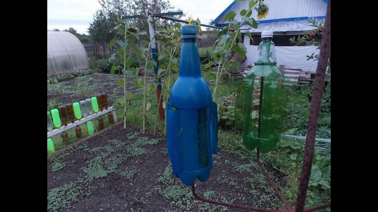 Помогает ли отпугиватель от кротов из пластиковой бутылки?