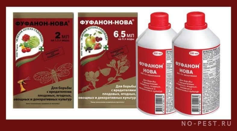 1 эффективное средство от клопов без запаха