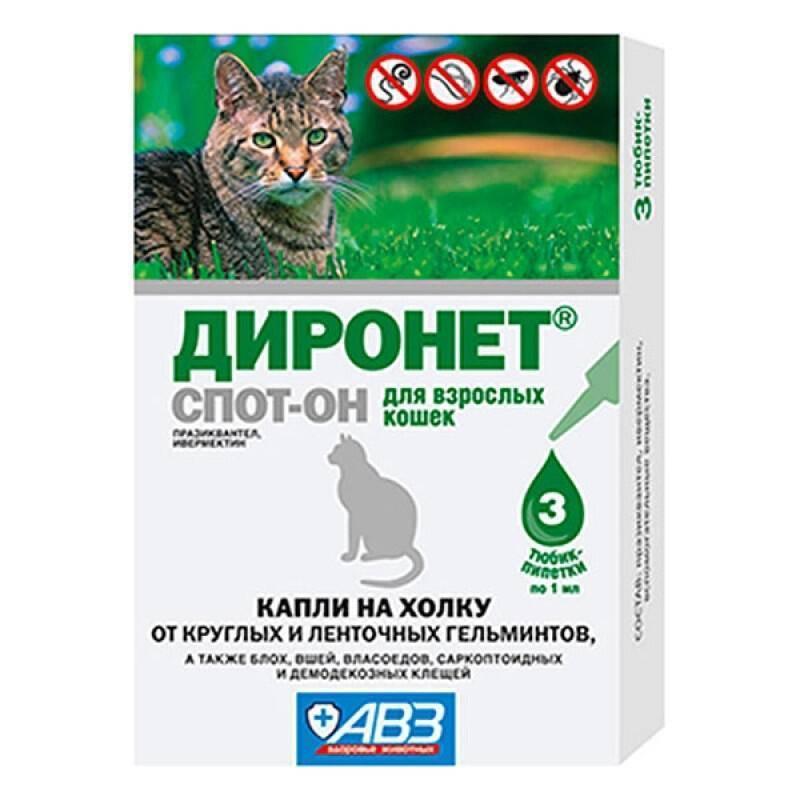 Помогут ли капли на холку избавить кошку от глистов?
