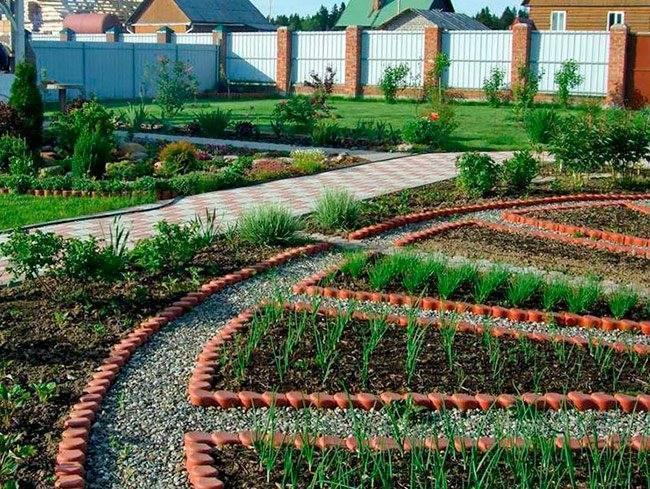 Вредители сада и огорода: фото, названия и советы по выведению