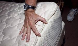 Мебельные вредители — клопы. методы избавления