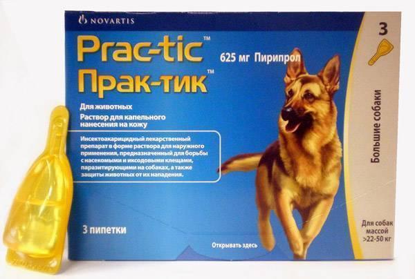 Практик для собак - инструкция по применению, отзывы