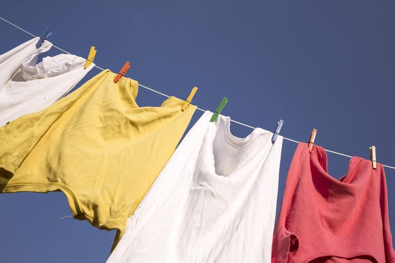 Как удалить неприятную плесень с одежды разными способами