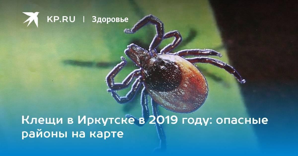 Какие опасные районы клещей в москве?