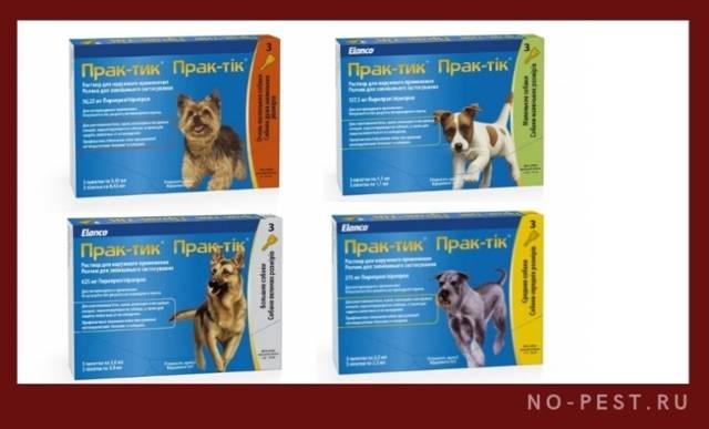Симпарика (simparica) для собак и щенков – инструкция по применению жевательных таблеток от блох и клещей