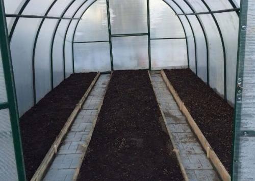 8 способов обеззаразить стенки и почву в теплице
