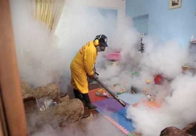 Уничтожение клопов при помощи холодного тумана: отзывы, принцип действия, особенности и преимущества