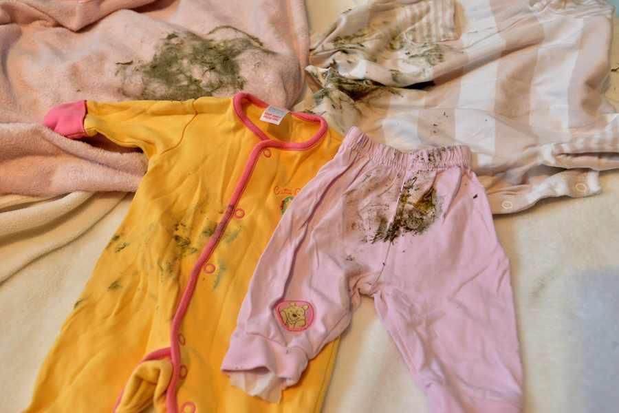 Как вывести плесень с одежды