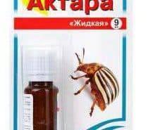 Апачи от колорадского жука – инструкция