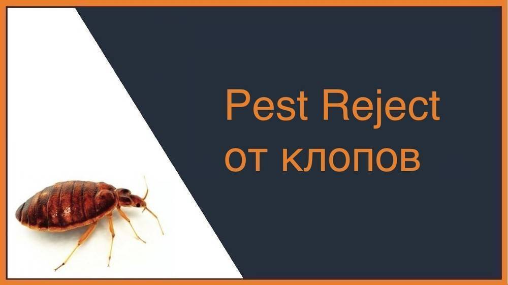 Гроза грызунов и насекомых: pest reject инструкция на русском