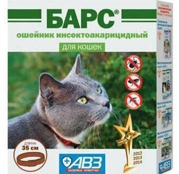 Помогает ли кошкам ошейник от блох и какой из них лучше