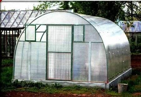 Обработка теплицы из поликарбоната весной и осенью