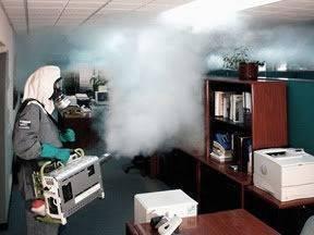Уничтожение клопов холодным туманом и отзывы об этой процедуре