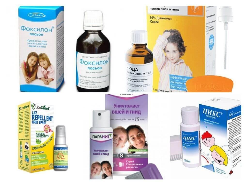 Профилактика педикулеза | меры профилактики вшей у детей и взрослых профилактика педикулеза | меры профилактики вшей у детей и взрослых
