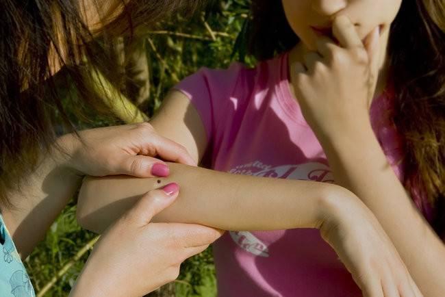 Клещевой боррелиоз: симптомы и лечение