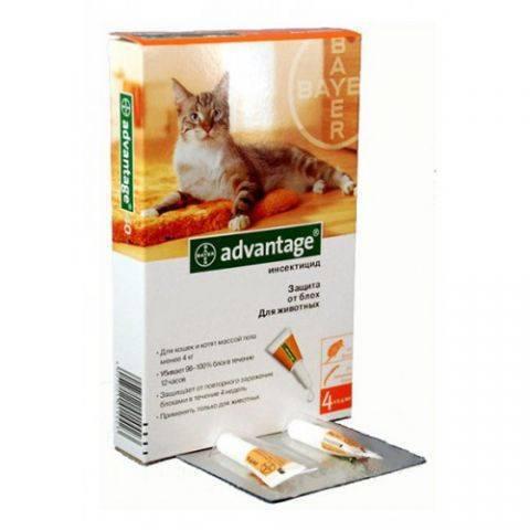 Капли от блох для котят адвантейдж