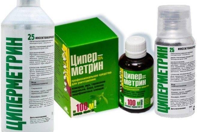 «циперметрин» от тараканов: отзывы и инструкция по применению