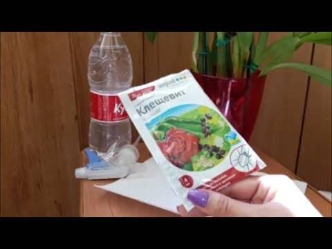 Клещевит, клещевит супер – инструкция по применению, отзывы огородников и цветоводов