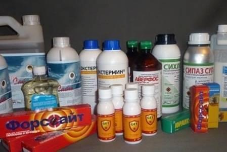 Инсектицидное средство кукарача от клопов: инструкция по применению, отзывы, средняя цена