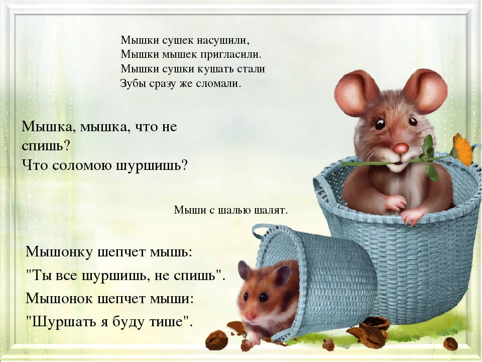 Интересные факты о крысах и мышах