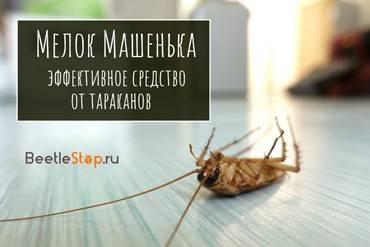 Как применять мелок машенька от тараканов?