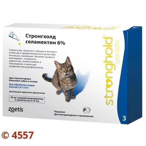 7 видов капель от глистов, блох и клещей для кошек на холку