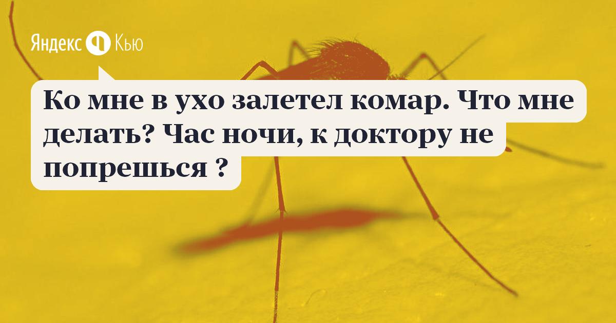 В ухо попало насекомое: как вытащить из уха ребенка, симптомы, фото, видео, удаление, что делать?