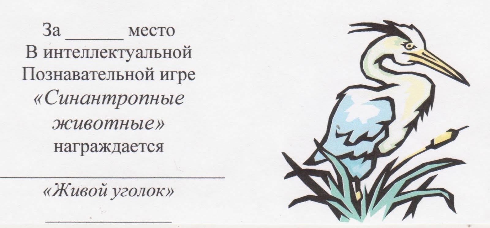 """Рубрика """"паразиты и кровососущие"""""""