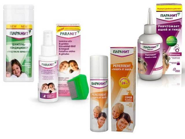 Педикулез: лучшие средства для лечения вшей и гнид