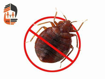 Синузан от тараканов