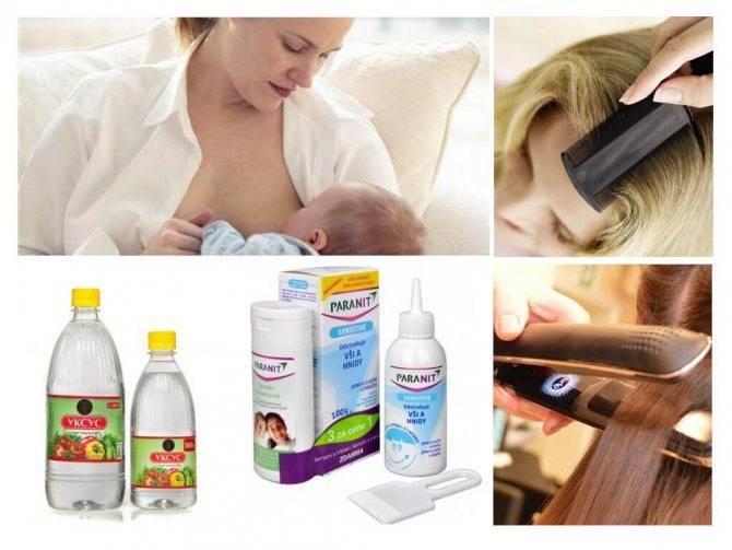 Педикулез лечение у беременных