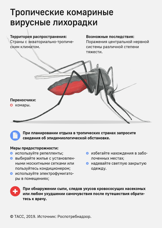 Что будет, если укусит малярийный комар