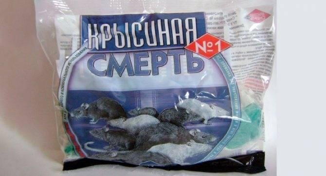 Крысиный яд — смертельная доза для человека, симптомы и последствия отравления