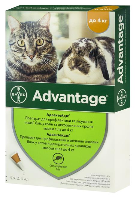 Комфортис — таблетки от блох для кошек и собак