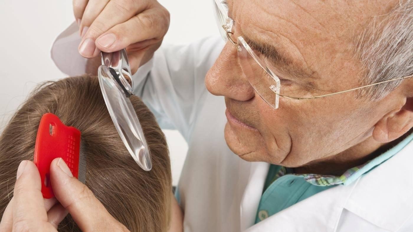 Лечение педикулеза в домашних условиях: быстро, эффективно и надолго