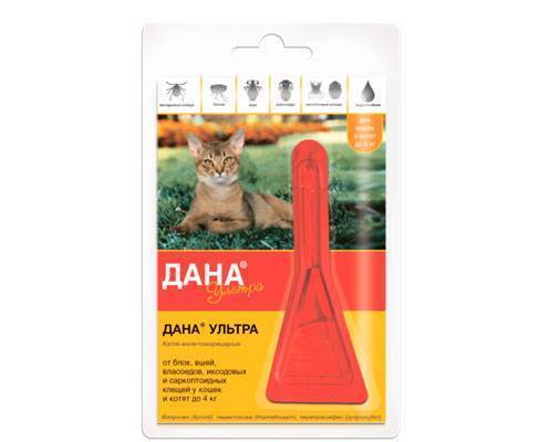 Капли от клещей для кошек и другие противопаразитарные препараты