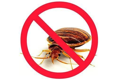Мощный концентрат против тараканов для помещений