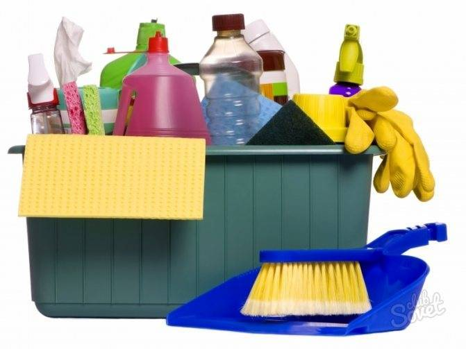 Как навсегда избавиться от мышей в доме, квартире и на даче