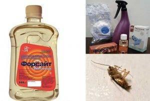 Как использовать форсайт от тараканов