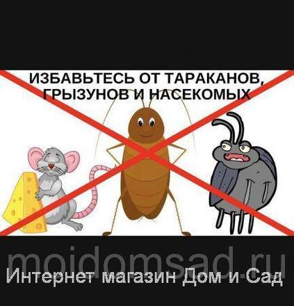 Борьба с тараканами в квартире: электронный и ультразвуковой электронный отпугиватели тараканов
