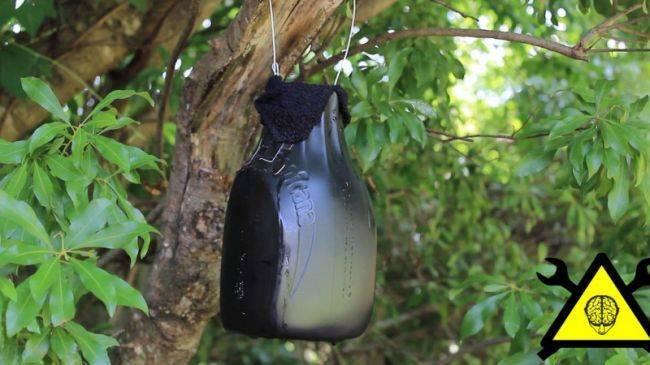 Самодельная ловушка для комаров - как сделать своими руками с фото
