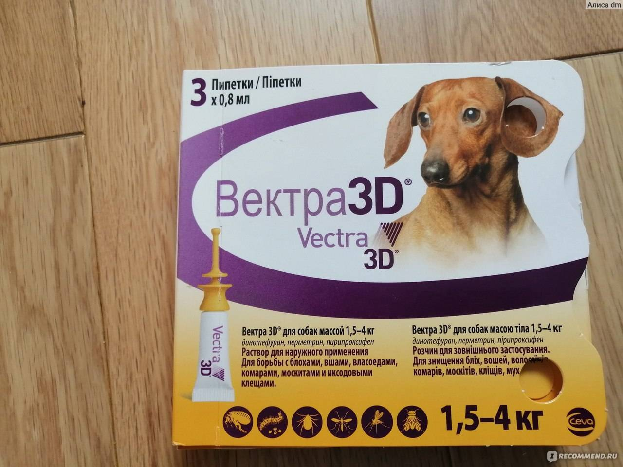 Капли вектор 3d от клещей для собак — инструкция по применению, отзывы, противопоказания